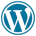 site guy wordpress sites